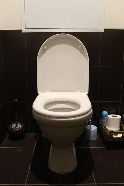 truco ahorrar agua en wc